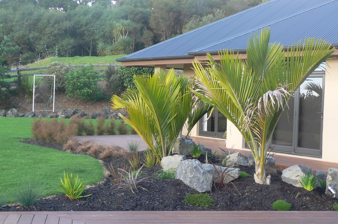 Portfolio of landscape design ideas from fusion lynn for Native garden designs nz